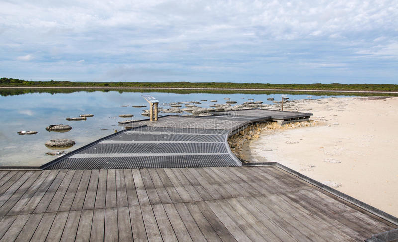 Lake Thetis Observation Deck. Observation deck and walkway at Lake Thetis with stromatolites and coastal vegetation under a cloudy sky in Western Australia royalty free stock photo