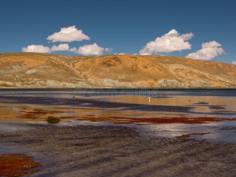 Download Lake in Tibet stock image. Image of lamaism, tibet, high - 28354493