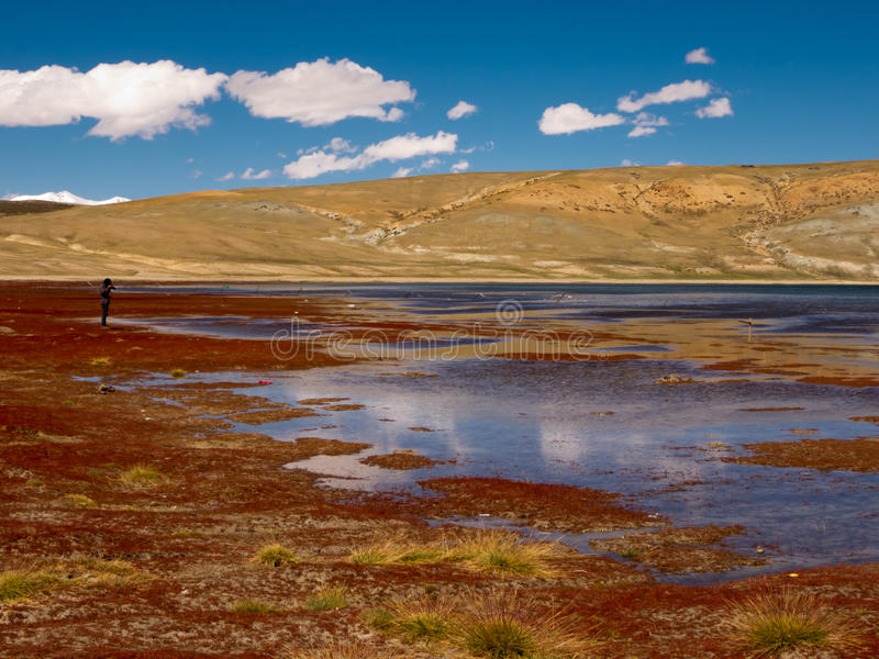 Download Lake in Tibet stock image. Image of altitude, height - 28354527