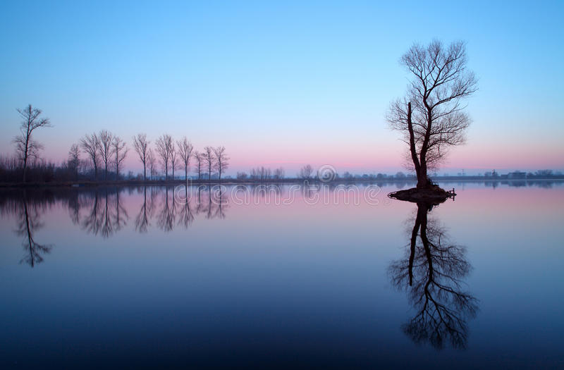 Lake with tree at sunrise, Slovakia stock images