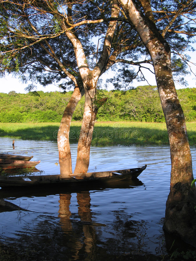 Download Lake with trees and canoe stock photo. Image of water, lake - 474194