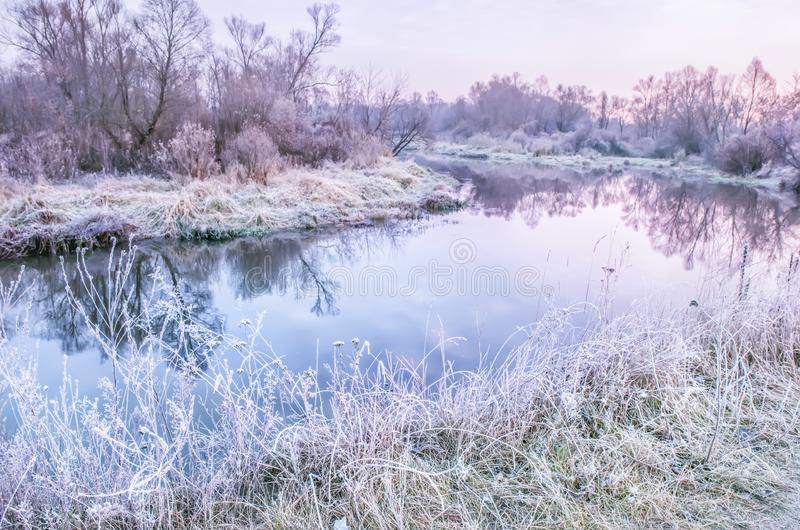 A lake among trees and grass covered with white hoarfrost. early morning. stock photo