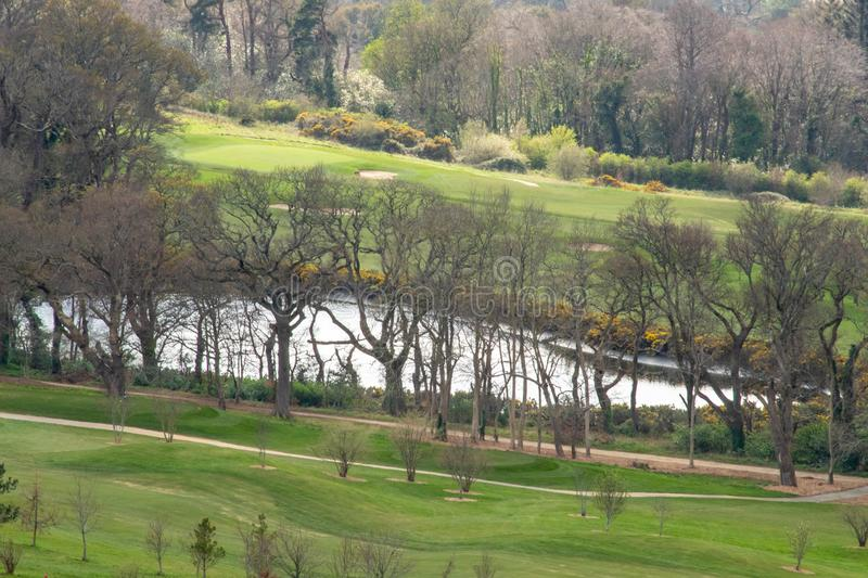 A Lake Through the Trees on a Green Lawn stock photography