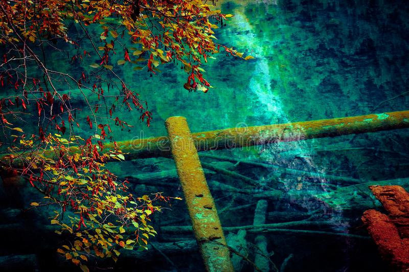 Lake and Trees in Jiuzhaigou Valley, Sichuan, China. Jiuzhaigou is one of the best natural sight in the would, due to its water, mountain, trees. it is located royalty free stock photography