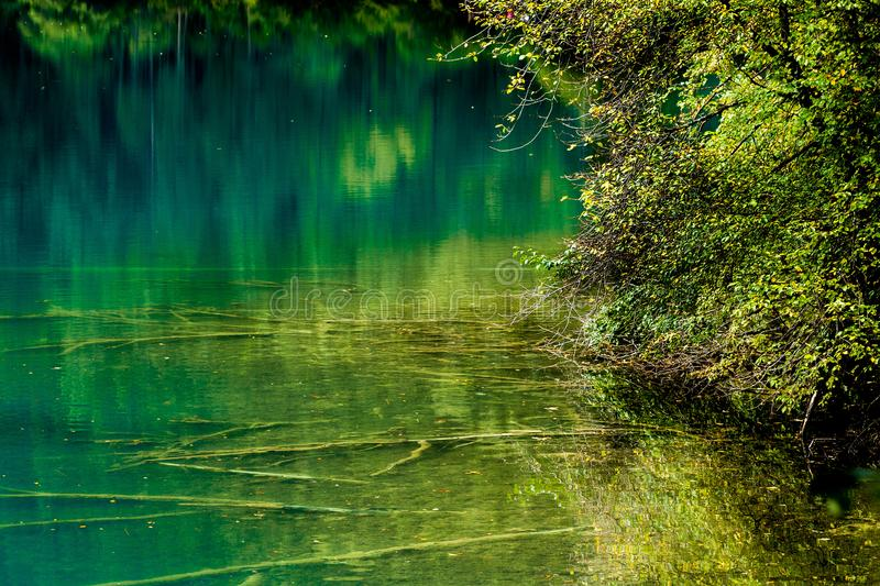 Lake and Trees in Jiuzhaigou Valley, Sichuan, China. Jiuzhaigou is one of the best natural sight in the would, due to its water, mountain, trees. it is located stock images