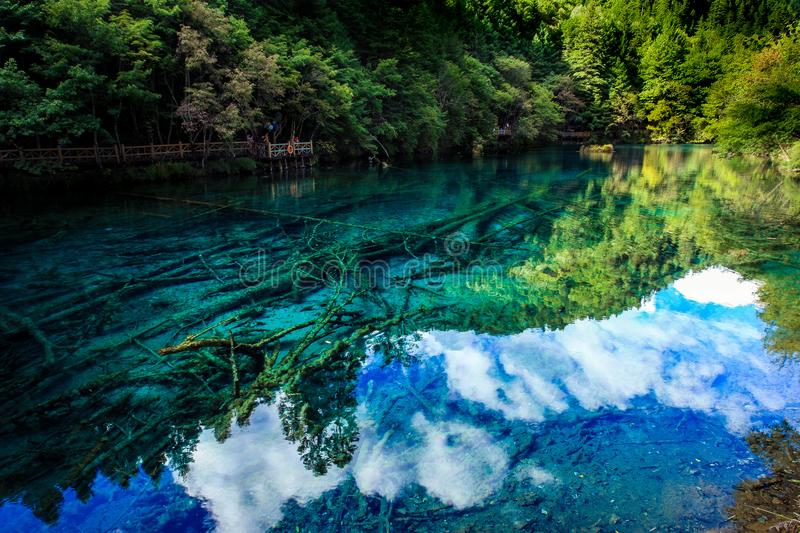 Lake and Trees in Jiuzhaigou Valley, Sichuan, China. Jiuzhaigou is one of the best natural sight in the would, due to its water, mountain, trees. it is located stock photo