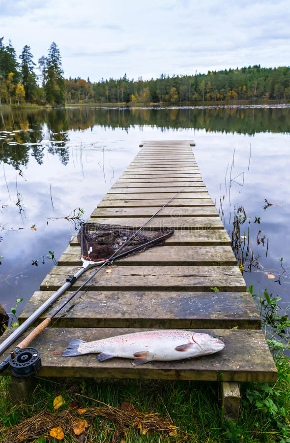 Lake trout fishing in autumn. Autumn scenery of lake trout fishing in Sweden royalty free stock photo