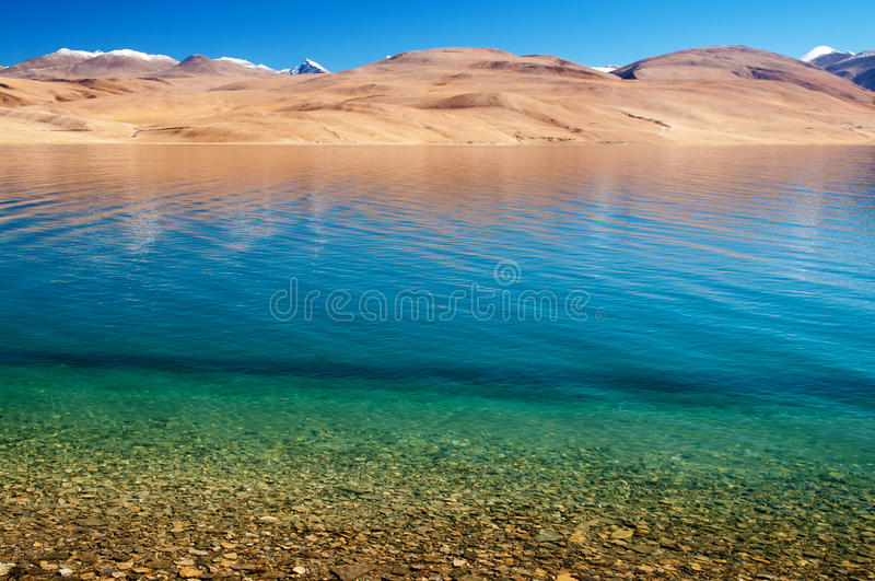 Lake Tsomoriri royalty free stock photos
