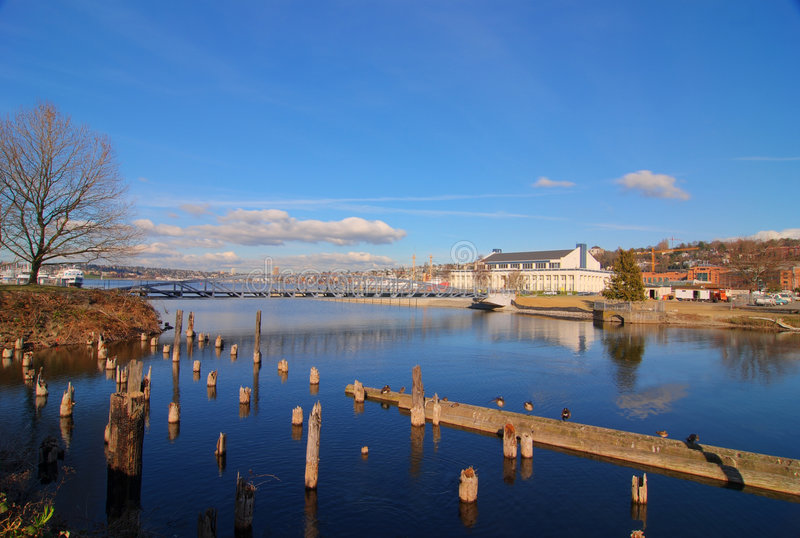 Download Lake Union stock photo. Image of moors, water, washington - 4548430