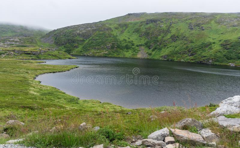 Lake and vegetation of the tundra on the island Soroya, Norway. Lake and vegetation of tundra on the island Soroya, Norway royalty free stock photo
