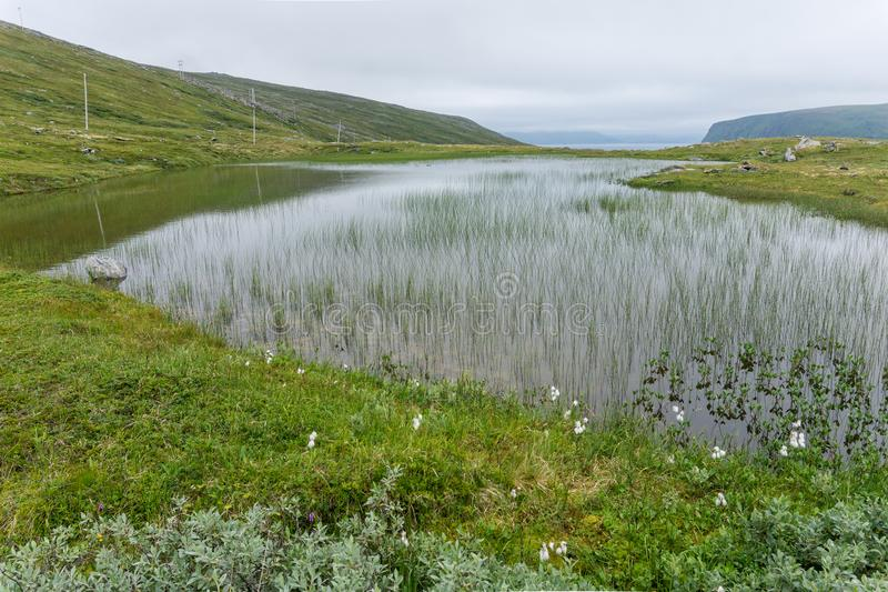 Lake and vegetation of the tundra on the island Soroya, Norway. Lake and vegetation of tundra on the island Soroya, Norway royalty free stock image