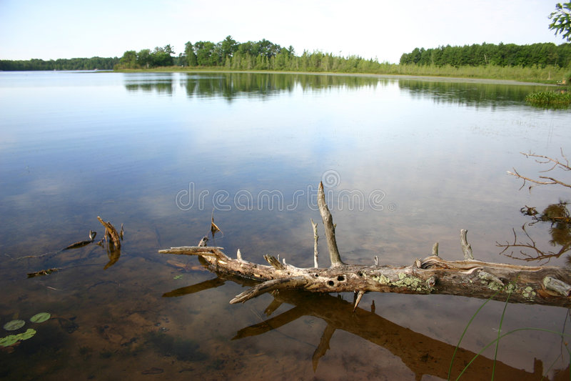 Lake View royalty free stock photography