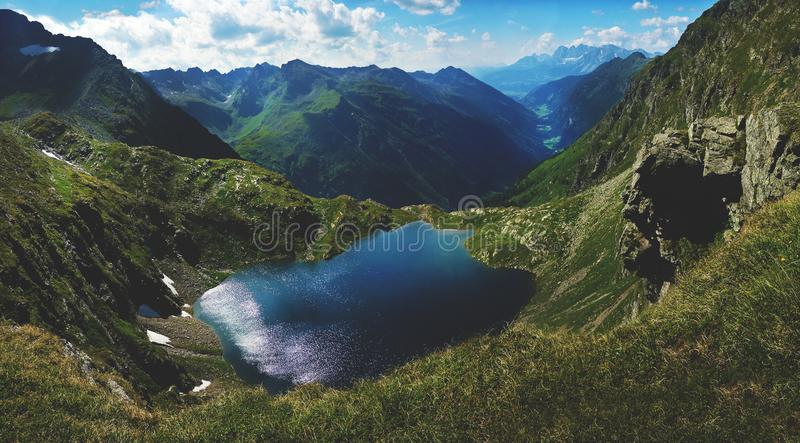 A lake view in Austrian mountains - Alps. Mixed breed bitch of belgian malinois and border collie, chilling on the garden royalty free stock photo