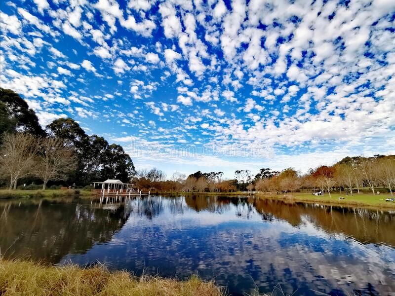 Lake view @ Fagan Park Sydney stock images
