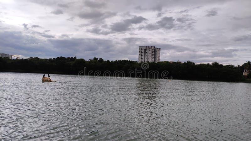 Lake View - Hebbal. Lake view - . lake view - . lake view -, bangalore, pic, photography, india stock photos