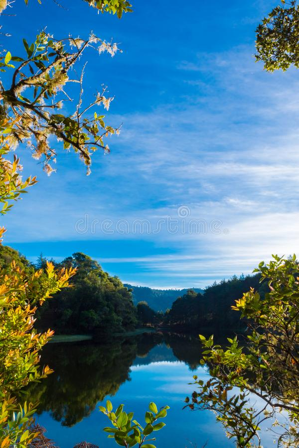 Lake view in summer. Great lake view at a beautiful day of summer in a scenic place stock photos