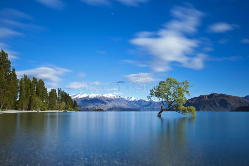 Lake Wanaka fotografering för bildbyråer