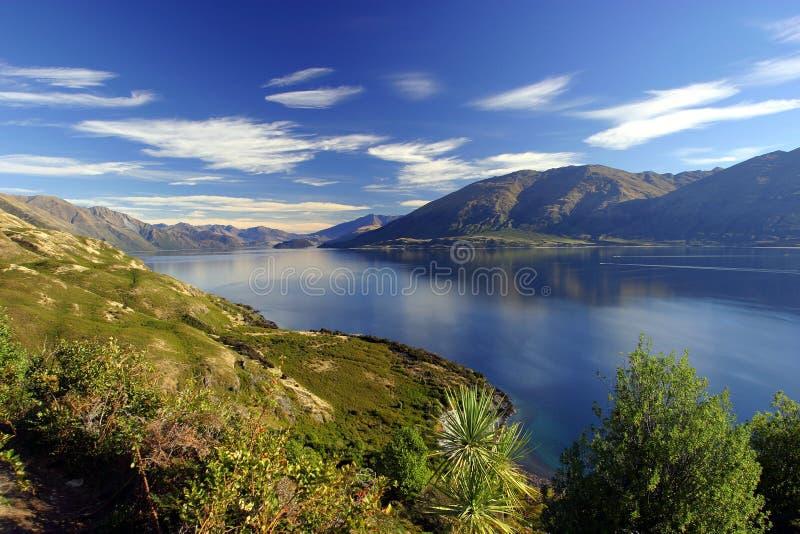 Lake Wanaka, New Zealand stock images