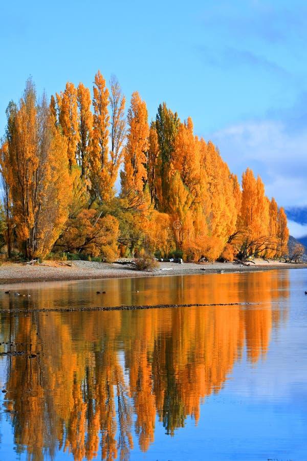 Lake Wanaka,South Island New Zealand. royalty free stock image