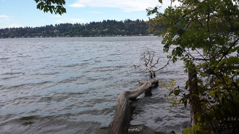 Lake Washington at Saint Edwards State Park. Lake Washington at Saint Edwards State royalty free stock photos