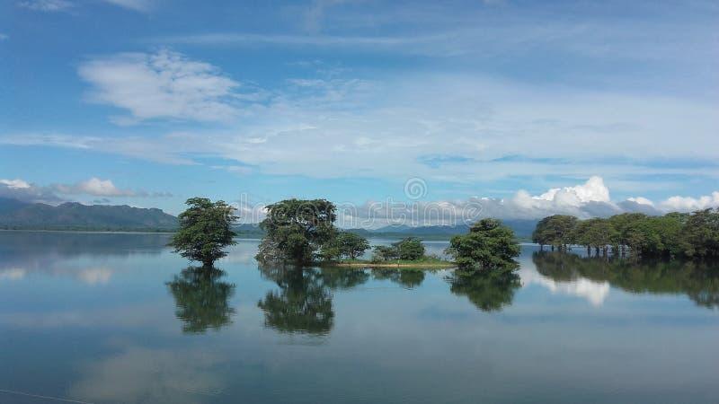 Lake and Water royalty free stock photos