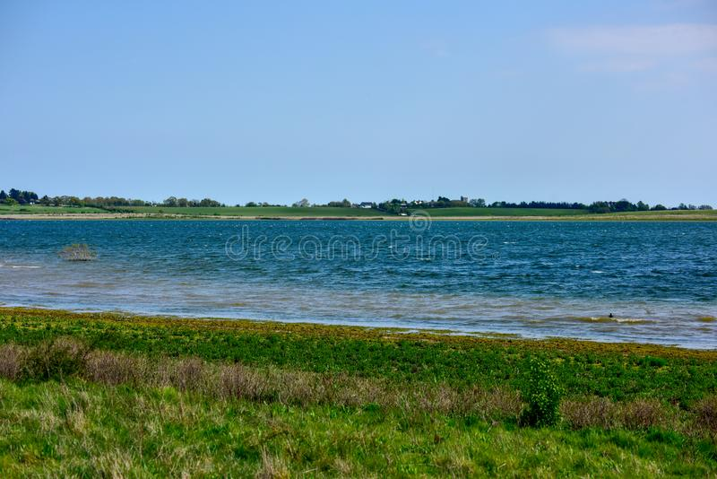 Lake, wetland observation of wild birds. Lake in the UK, marshy area a fantastic place to observe wild birds, relax and rest after work, idea for spending royalty free stock photo