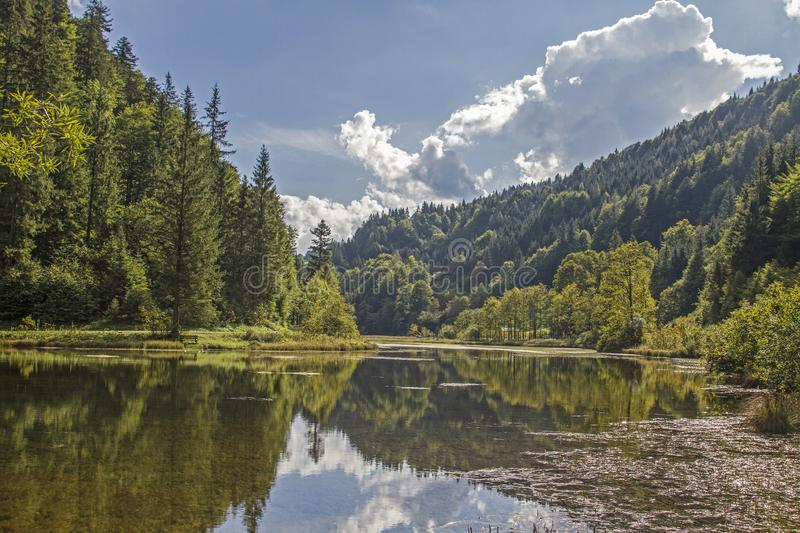Wiesensee - mountain lake near Hochfilzen. The lake Wiesensee, a small idyllic mountain lake between Pillersee and Hochfilzen is located in the eastern part of stock photo