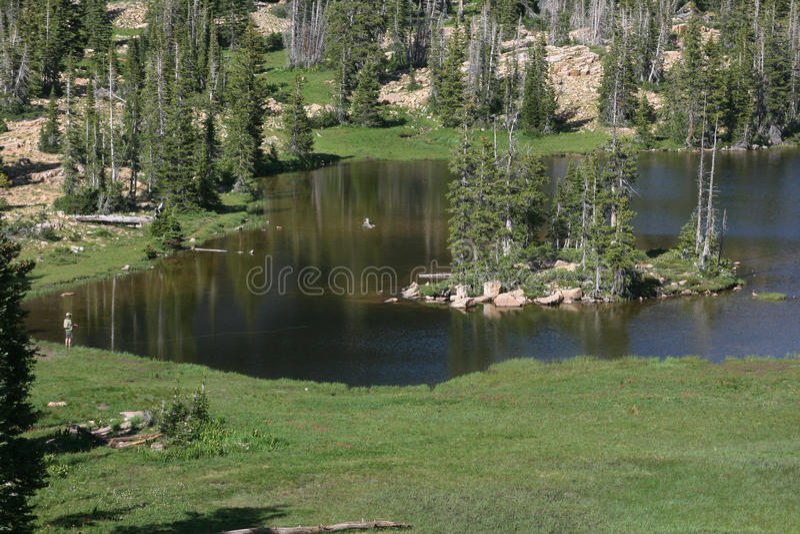 Download Lake And Woodland Stock Image - Image: 10321701