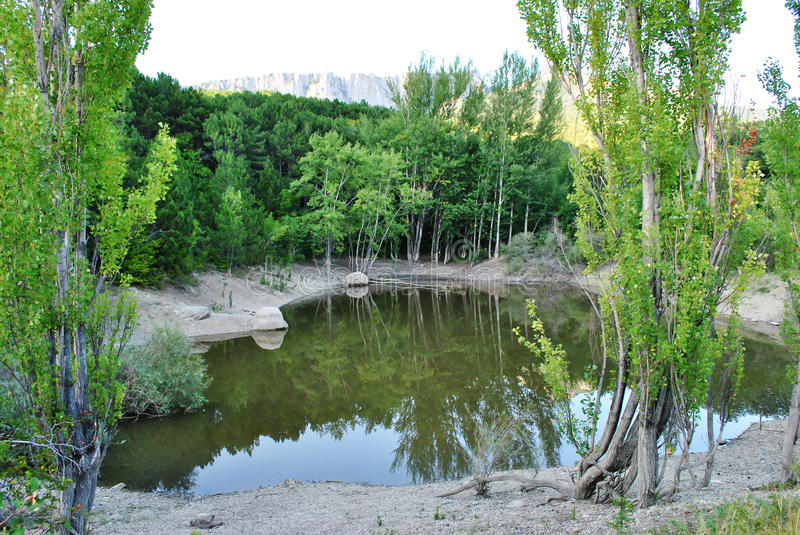 Lake of the Woods. A small lake in the forest on the peninsula of Crimea royalty free stock photos