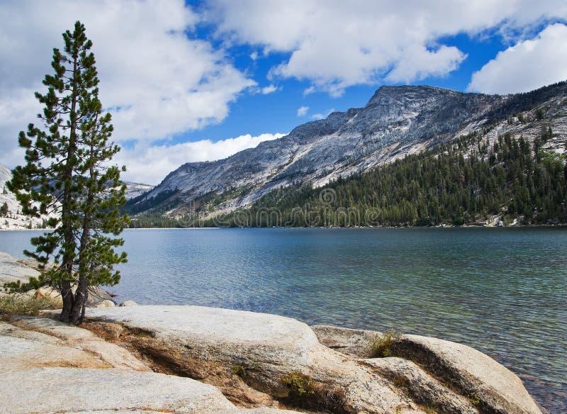 Lake in Yosemite royalty free stock images