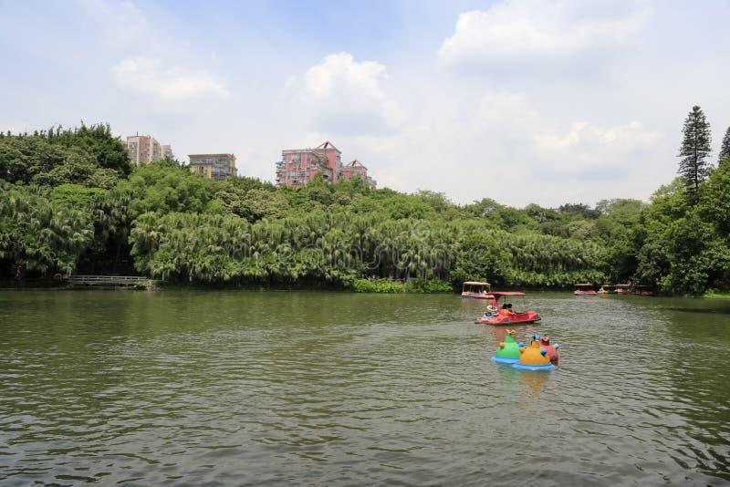 Lake in yuexiu park royalty free stock photo