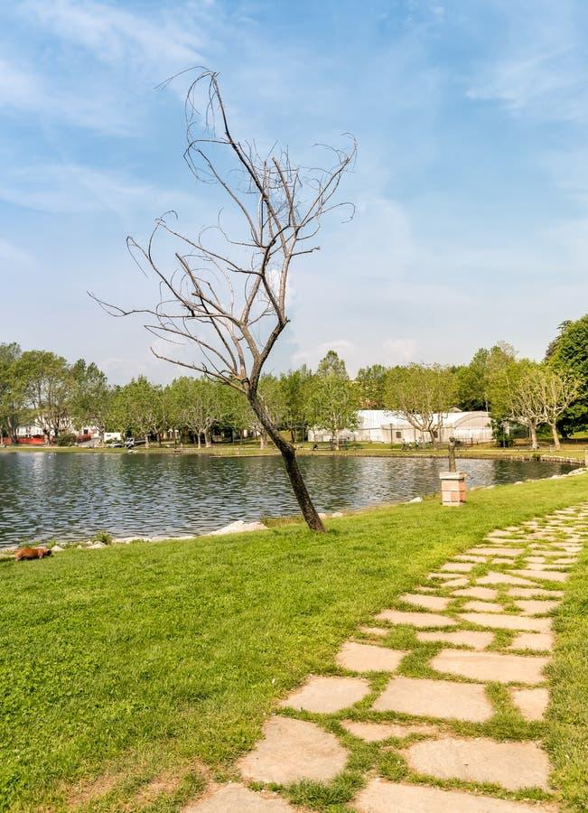 Lakefront av Gavirate som lokaliseras på kusten av sjön Varese, Italien arkivbilder