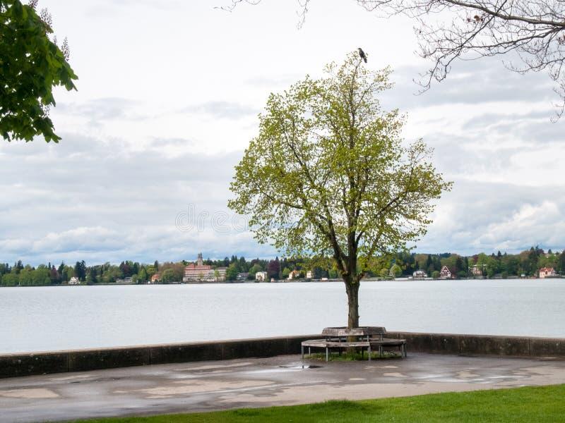 Lakefront som förbiser durnate om den dystra dagen royaltyfri fotografi