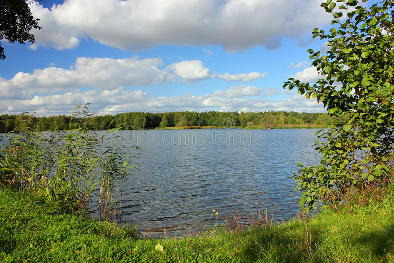 Lakekust Royaltyfria Foton