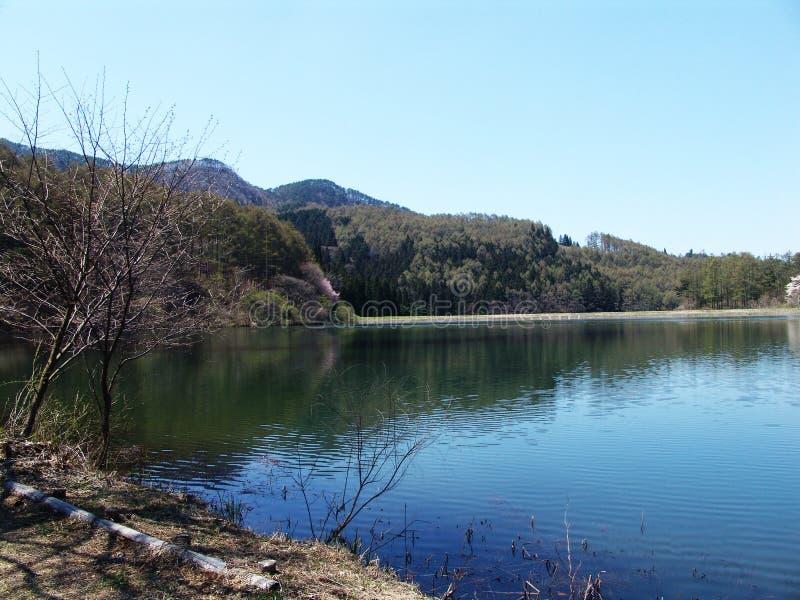 Lakelandscape arkivfoton