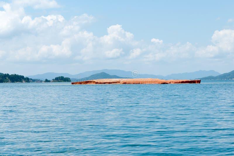 Lakeliggande royaltyfri foto