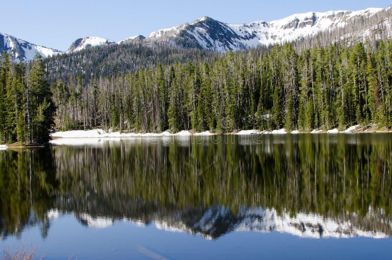 lakenationalpark sylvan yellowstone royaltyfria foton