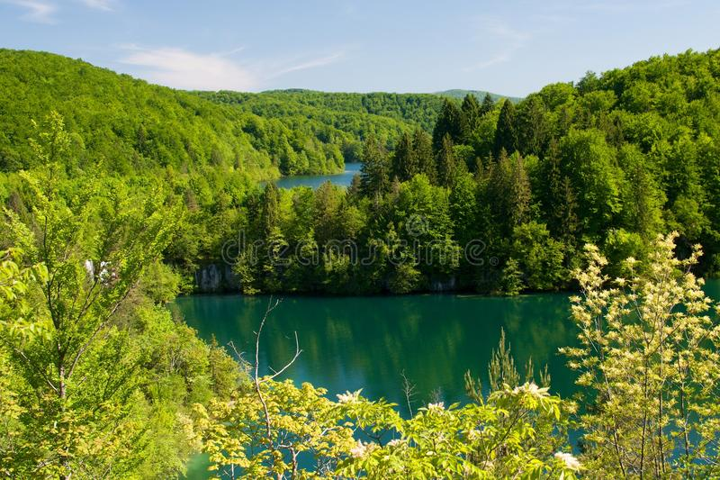Download The lakes in the forest stock image. Image of lakes, levels - 25362525