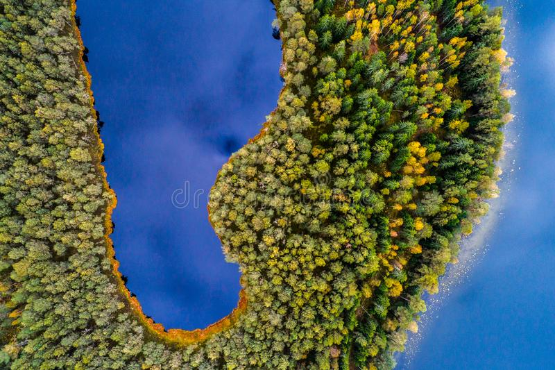 Lakes in forest, top view. Lakes in forest, aerial photography, Lithuanian nature from above