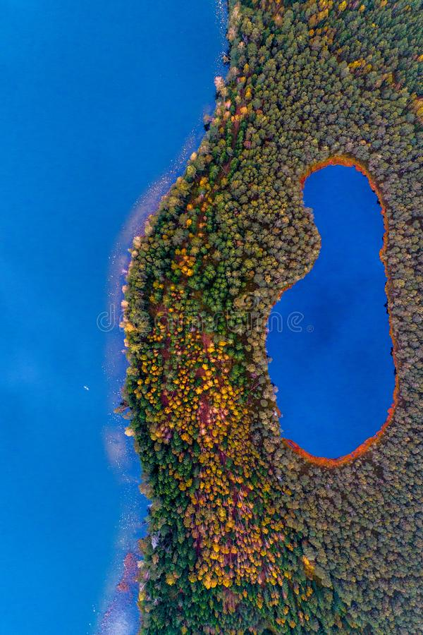 Lakes in forest top view. Aerial photography of beautiful Lithuanian scenic nature