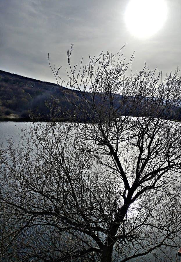 Lakescape arkivbilder