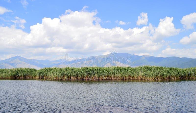 Lakescape, piccolo lago Prespa fotografia stock libera da diritti