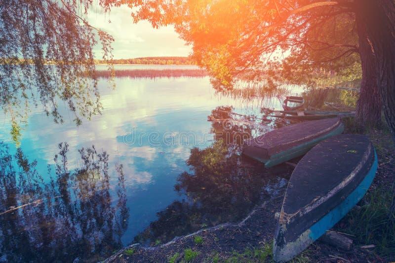 Lakeshore с отражением в воде на розовом восходе солнца стоковые изображения