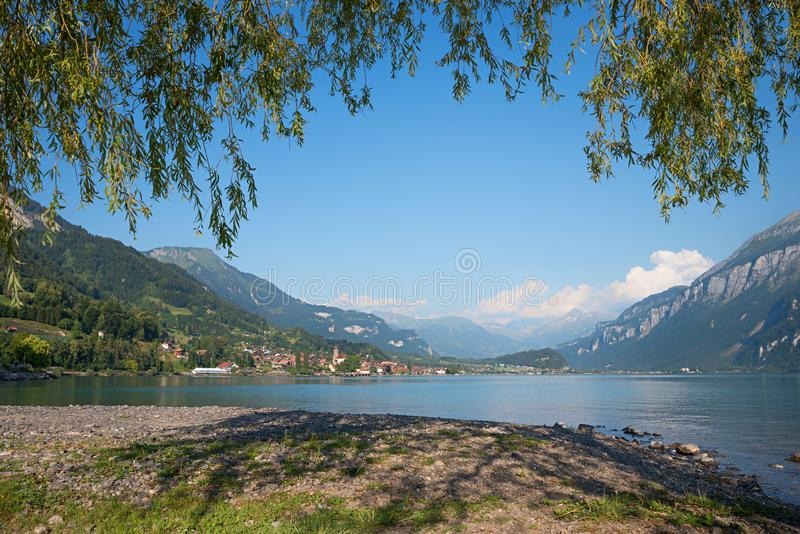 Lakeshore brienzersee, with view to spa town brienz, framed with royalty free stock photos