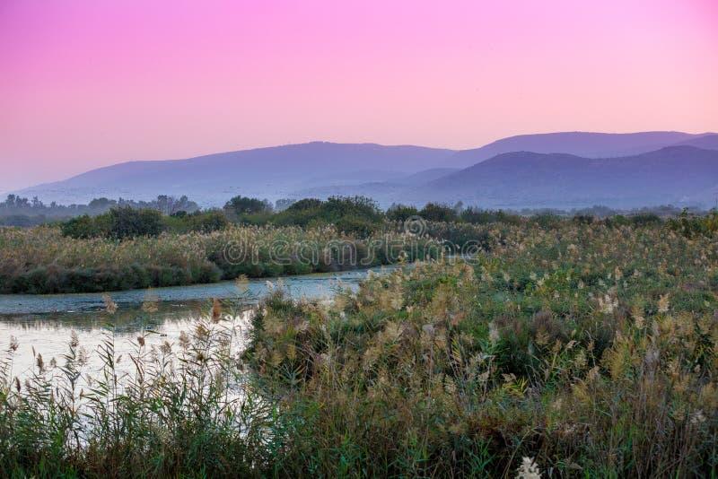Lakeshore contro lo sfondo delle montagne fotografie stock