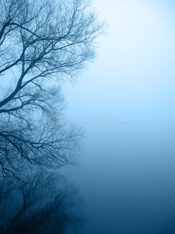 lakeshore dimmigt arkivbild