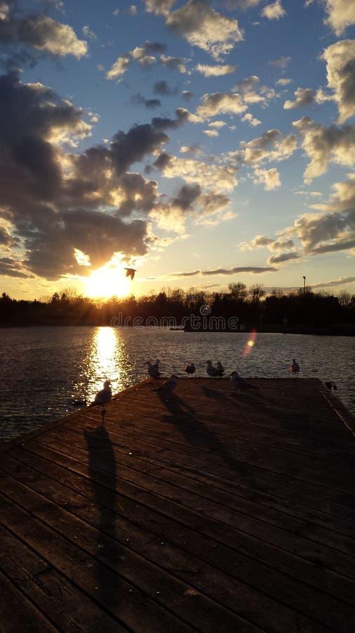 lakeshore sunset royalty free stock photos