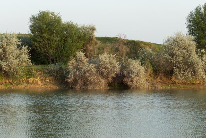 lakeside photos stock