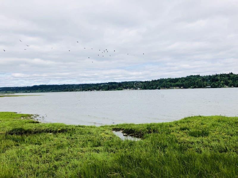 lakeside foto de stock