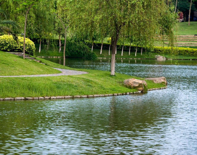 Download Lakeside stock photo. Image of weeping, pond, summer - 14473938
